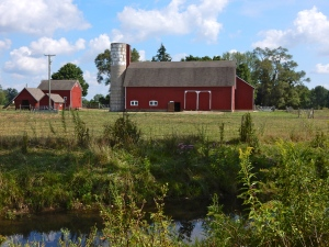 The barns of